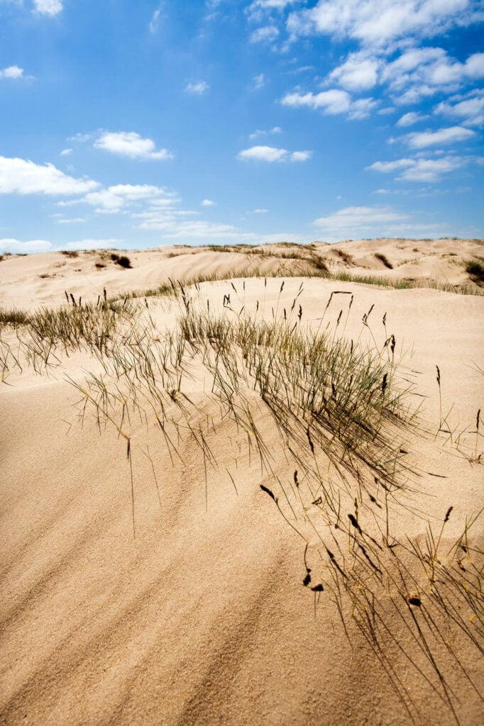 A large sand dune with grass growing in patches and a bright blue sky