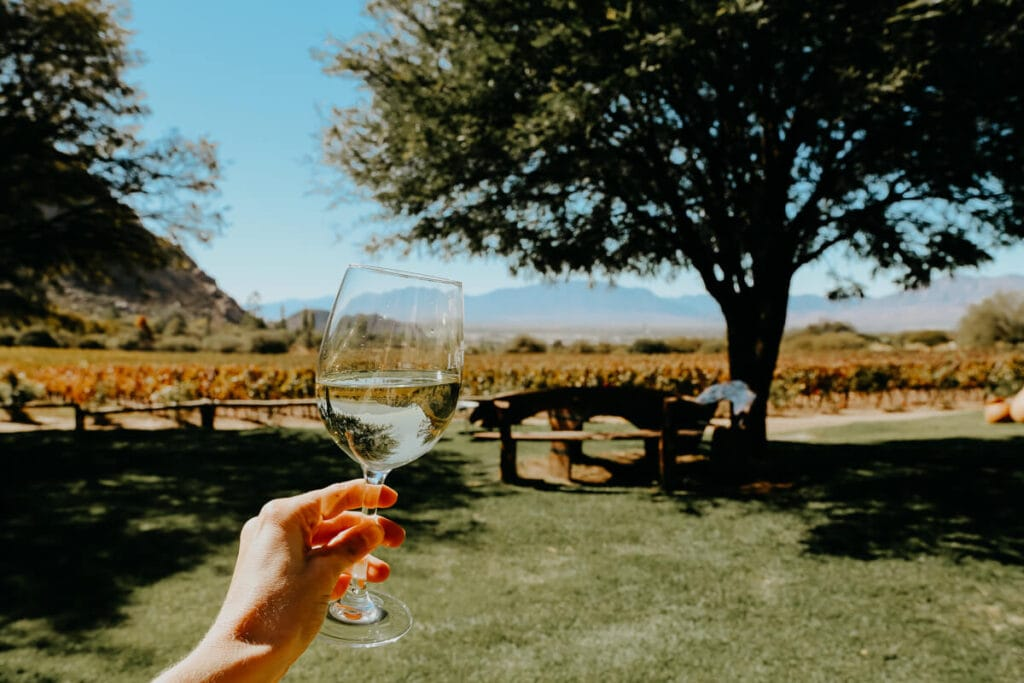 A hand holds a glass of white wine in front of a vineyard