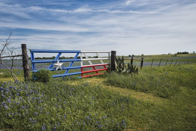 Texas Gifts: 12 Texas Themed Gifts for the Homesick Texan