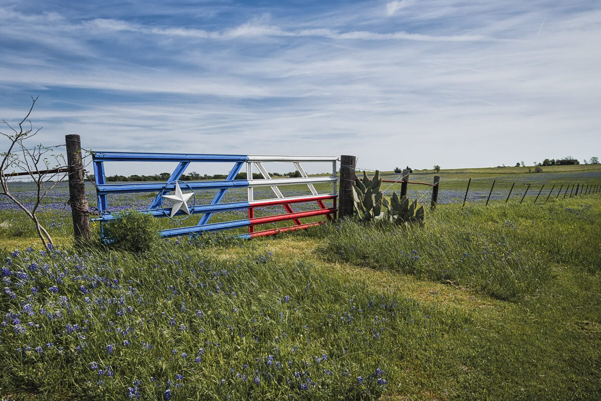 A texas flag painted on a gate in a green pasture