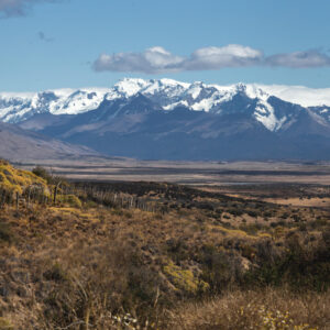 19 Things to do in El Calafate, Argentina