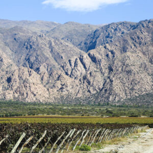 Things to do in Cafayate, Argentina: Wineries, Hikes & scenic drives