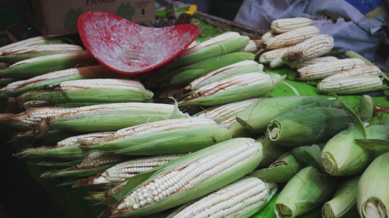 A Mexico City Market Tour: Explore La Merced Like a Local