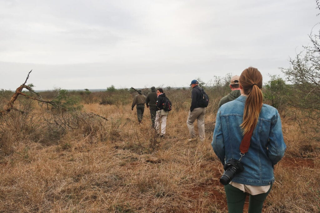 A line of people walk through the bush in South Africa