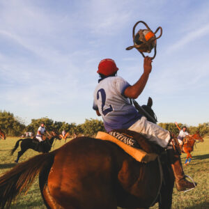 All About Pato: Argentina's National Sport