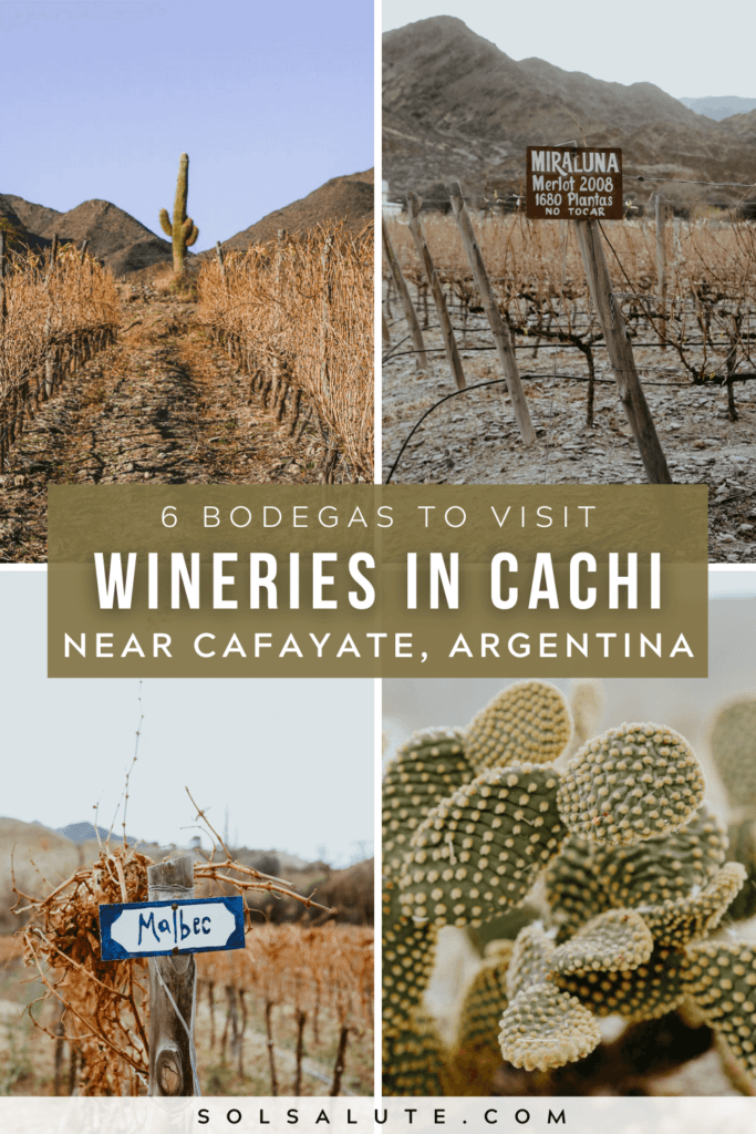 Wineries in Cachi Argentina   Bodegas en Cachi Salta   Bodegas en Salta   Wineries in Cafayate Salta   Cachi wineries to visit   Winery tourism in Argentina   Wine tasting in Argentina   Argentina wine regions to visit   Things to do in Cachi Argentina   Things to do in Salta Argentina   Northwest Argentina itinerary ideas   Desert wine region in Argentina   South America wine region   Wine tasting in South America   Things to do in Cafayate   Things to do in Argentina